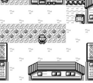 pokemonblue3