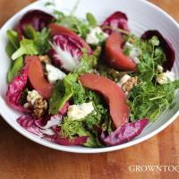 Winter greens and poached quince salad