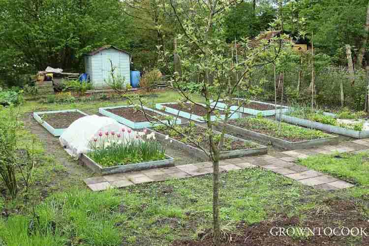 Garden jobs in April