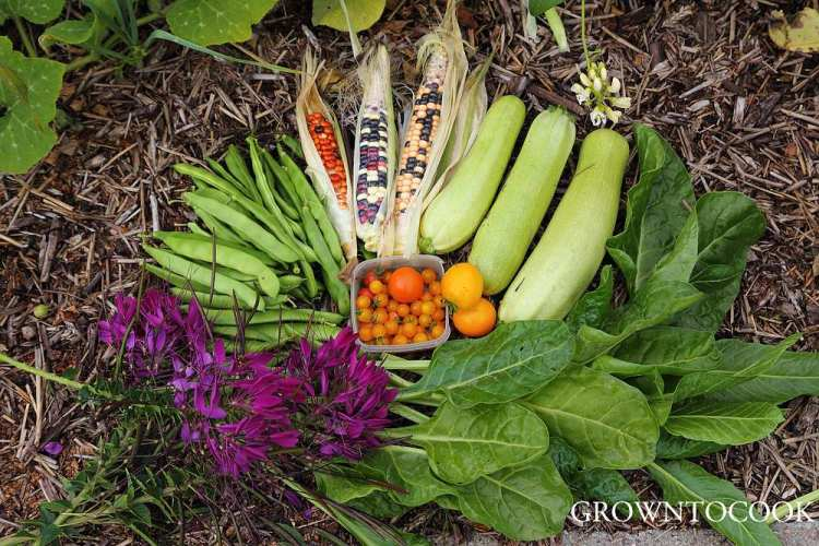 harvest from polyculture
