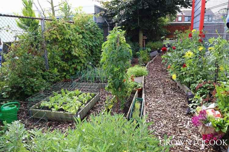 community garden hengelo netherlands