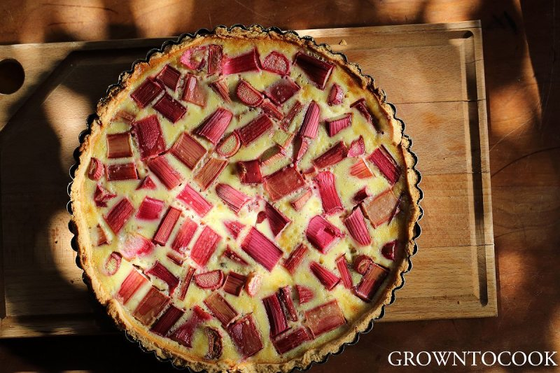 rhubarb vanilla custard tart