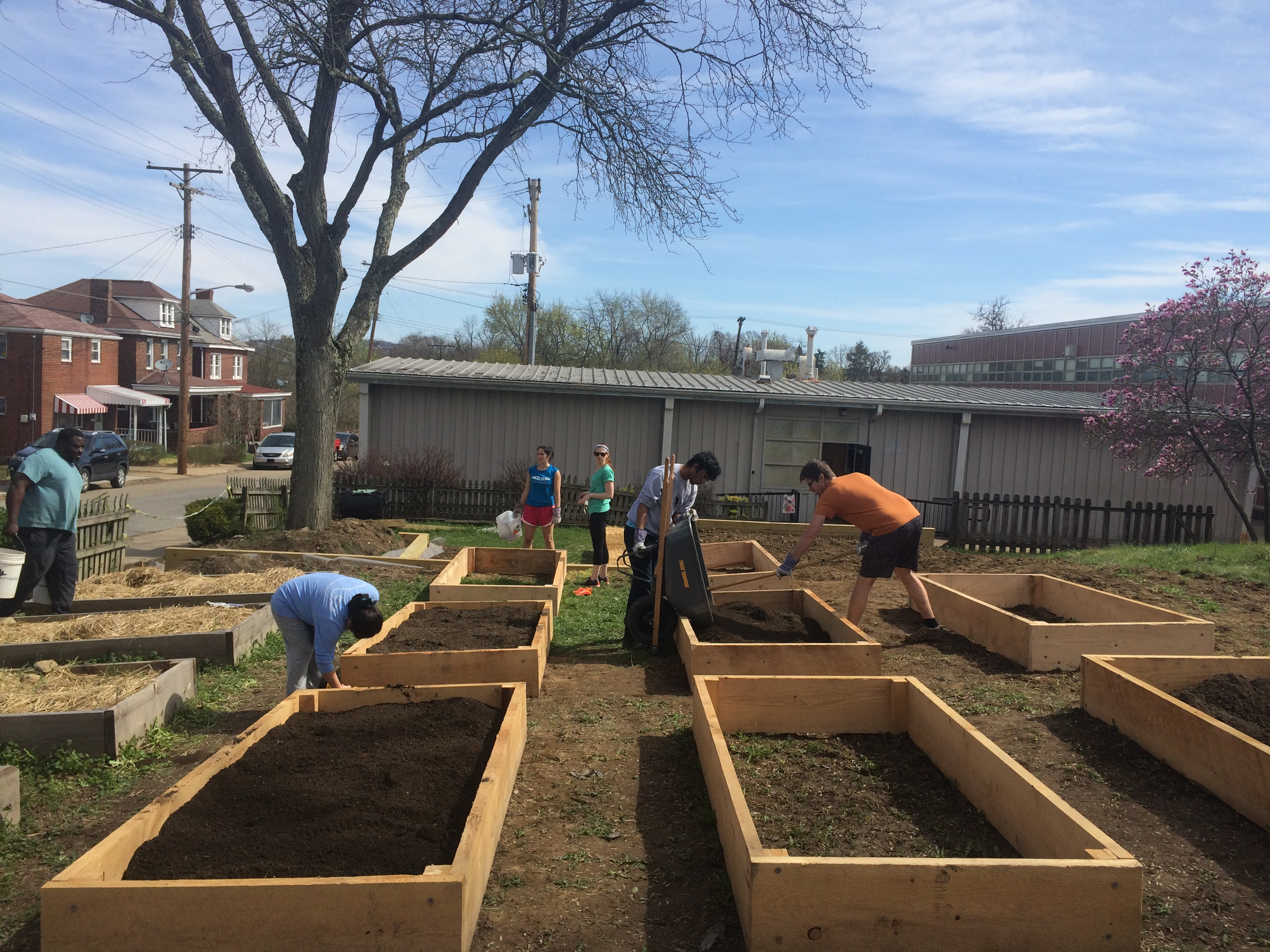 Webinar: Community Gardens: Healthy Operations and Outreach Practices in 2020