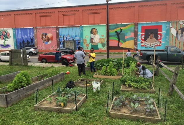 Community Garden Sustainability Fund Application Info Session