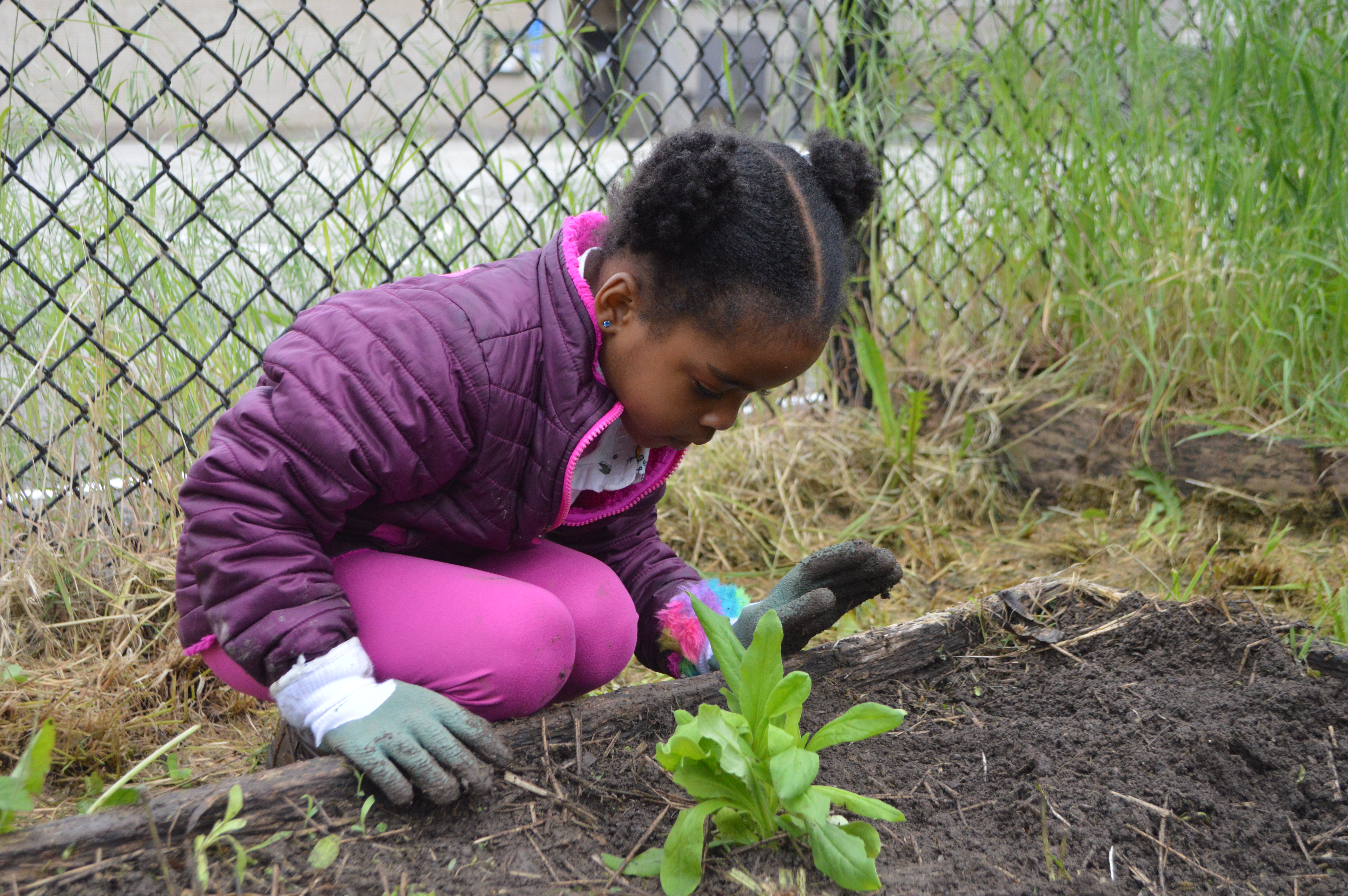 Webinar: Best Practices for Working with Kids in the Garden