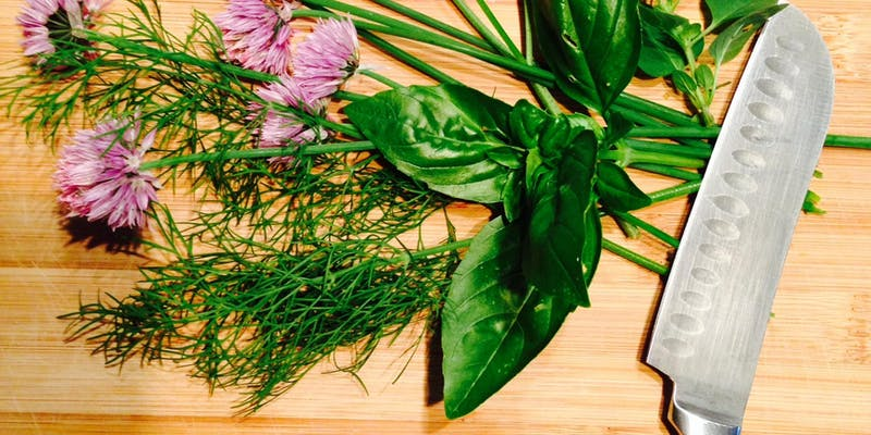 Backyard Farm School: How to Grow a Chef's Herb Garden