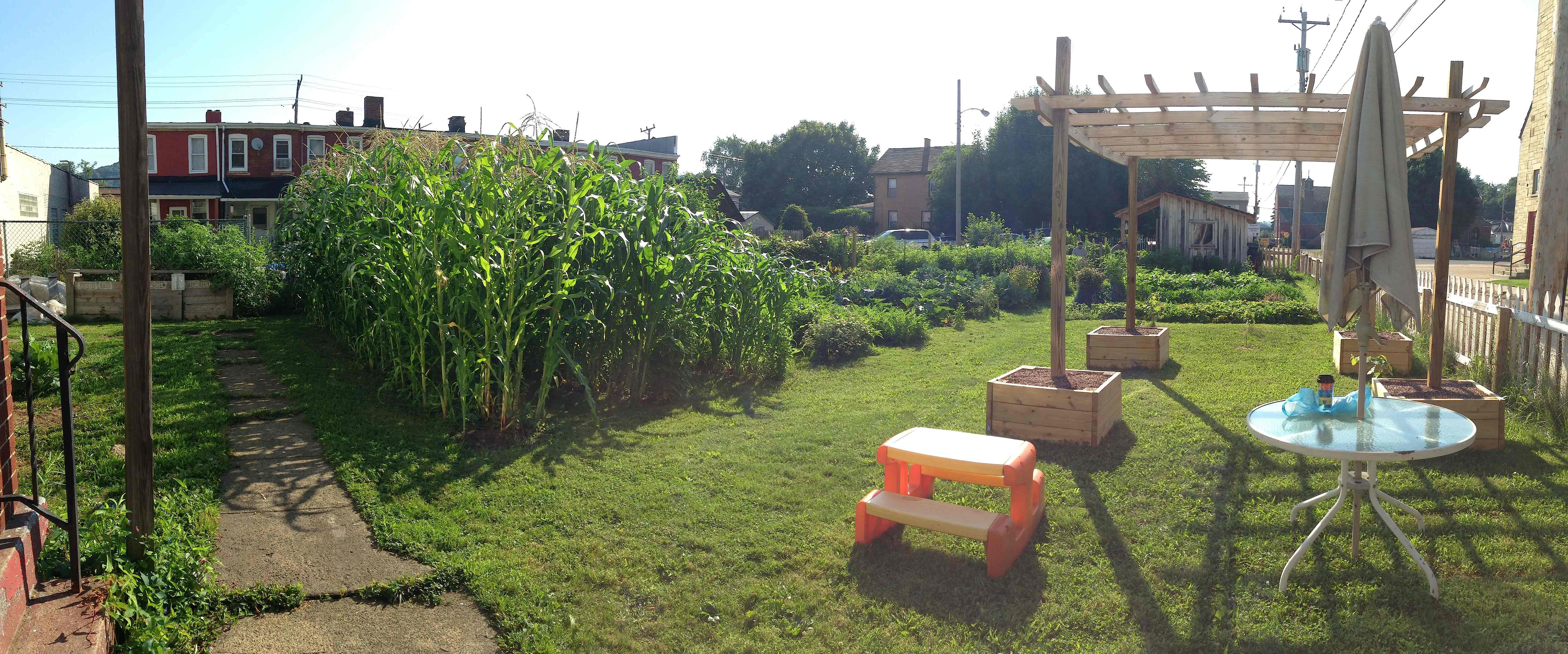 two ways to start a community garden in your neighborhood - How To Start A Community Garden