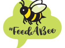 "whimsical graphic of a chat bubble with a bee inside it. The Text under the bee reads ""#FeedABee"""