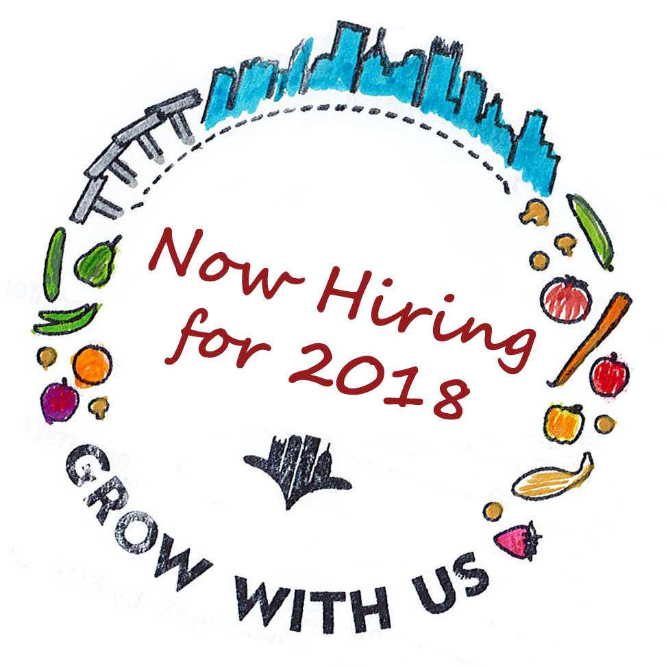 Now hiring three positions