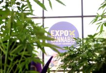ExpoCannabis Uruguay 2018
