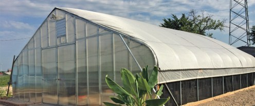 Victory Gardens greenhouse