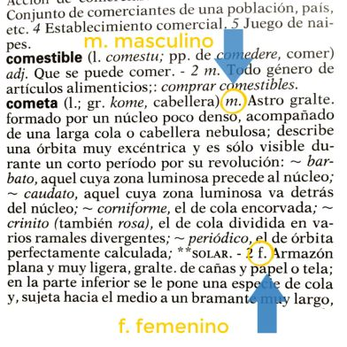 picture of spanish dictionary entry with arrows pointing to m. masculino and f. feminino