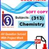 Chemistry 313-min