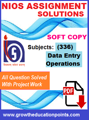 data entry 336 solved assignment