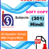 Hindi-301 Solved Assignment