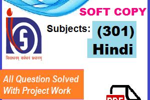 Nios Hindi-30 Solved Assignment