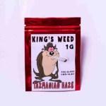 Tazmanian Haze KING'S WEED