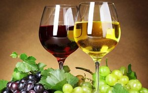 Γιορτή Κρασιού @ Δήμος Αλεξανδρούπολης Έβρος