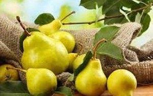 Γιορτή Αχλαδιού @ Δήμος Ρήγα Φεραίου Θεσσαλία