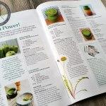 gruene-smoothies-rezepte.de im Trixx-Magazin