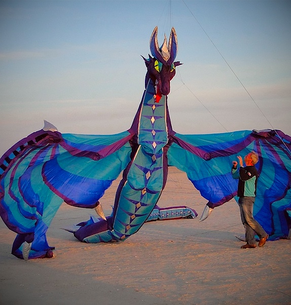 Wyveren Dragon Kite by Rolf Zimmermann