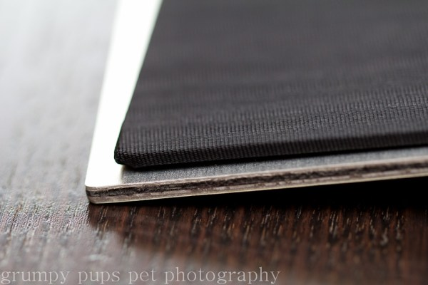 inside metal cover on a premier pet photo album from grumpy pups pet photography, west michigan