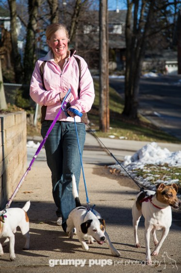 shelley irwin, wgvsu radio host, walks her three jack russell terriers for dogs unleashed magazine