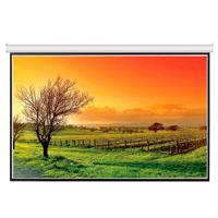 PANTALLA PARA PROYECCION VIEWSONIC PJ-SCW-1001W 100 PULGADAS  FORMATO 16:9 COLOR BLANCO MATE P/COLGAR MANUAL