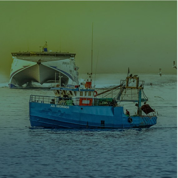 OCEANA WARNS THE EU'S SUSTAINABLE FISHERIES TARGET FOR 2020 IS IN JEOPARDY
