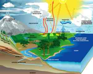 Evaporação  Geografia  Grupo Escolar