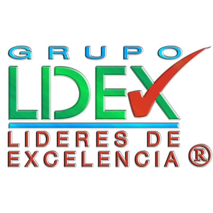 lidex-logo-2