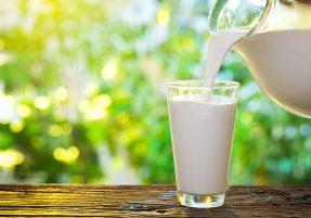 Pesquisadores desenvolvem leite mais saudável MidiaGEO