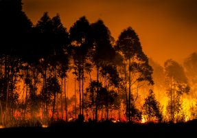 Estimativa de áreas queimadas no Brasil ganha maior precisão MidiaGEO
