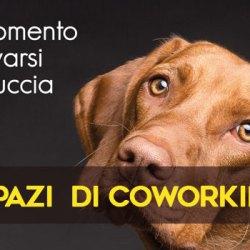 Conform, gli spazi di coworking a Genova