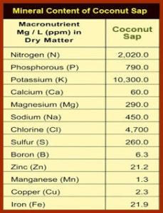 Minerali contenuti nello zucchero di cocco