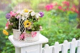 Tips for Fencing Your Garden hercules GSA
