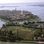 A Mazzorbo Zaia, Orsoni e Baratta vendemmiano l'uva d'oro per il vino di Venezia