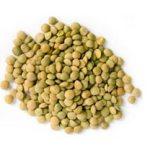 LENTICCHIE : piccole ma ricchissime di proteine