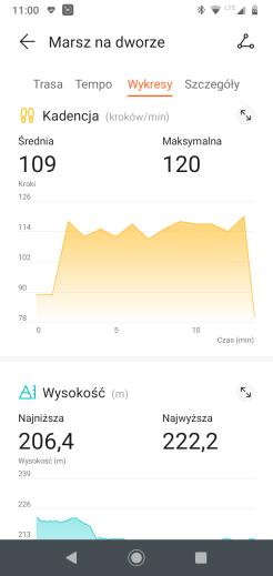 Huawei Zdrowie przykładowy trening: szczegóły marszu - wykresy 3