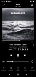 Sonos Move natywna obsługa Tidal (2)