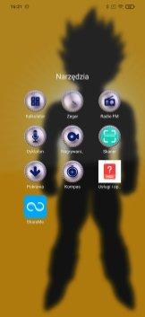 Screenshot_2021-01-04-16-21-55-709_com.mi.android.globallauncher