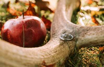 Fall wedding ring photo on Elk Antlers with apples and leaves