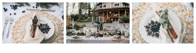 Winter Wedding at the Lookout Lodge in Snohomish Tablescape, Gold, Brown, Green, Navy Blue, Snowflake, Cinnamon, Eucalyptus, Wine, Antlers, Candles, Pinecones, Frost