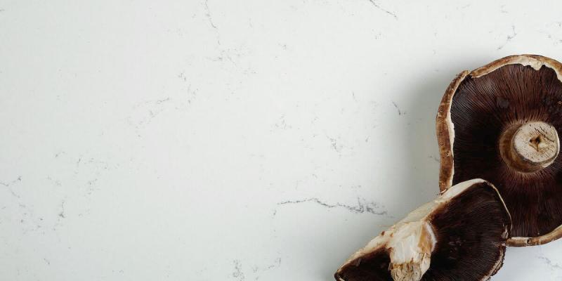 quartz kitchen countertops manufacturers gs1888