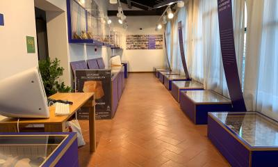 museo lab