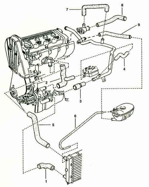 W Engine Diagram Oil Cooler Radiator