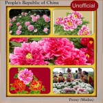 National Flower Series - East Asia 2- China (Mudan) - Unofficial