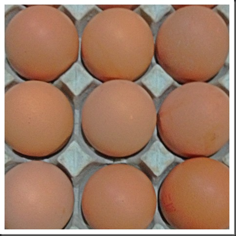 Eggs, Eggs, Eggs….. Join Me To Cook Eggs….
