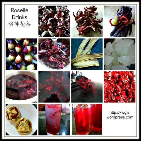 "Game To Try Some ""Wild Hibiscus"" Tea………….?(洛神花茶)"