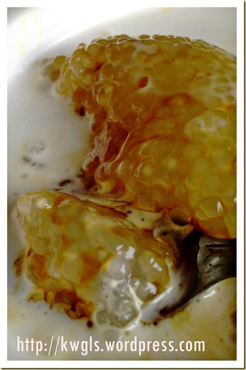 A 3 Ingredients Simple Dessert With Awesome Taste–Sago Gula Melaka Puddings (椰糖西米露)